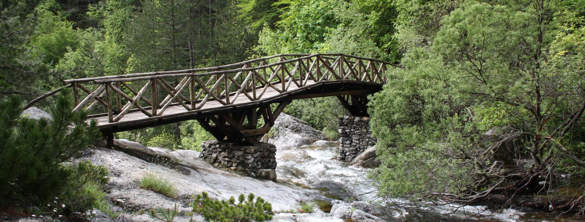 Bridge on Enipeas Gorge, Enipeas Gorge, Mt. Olympus, Pieria
