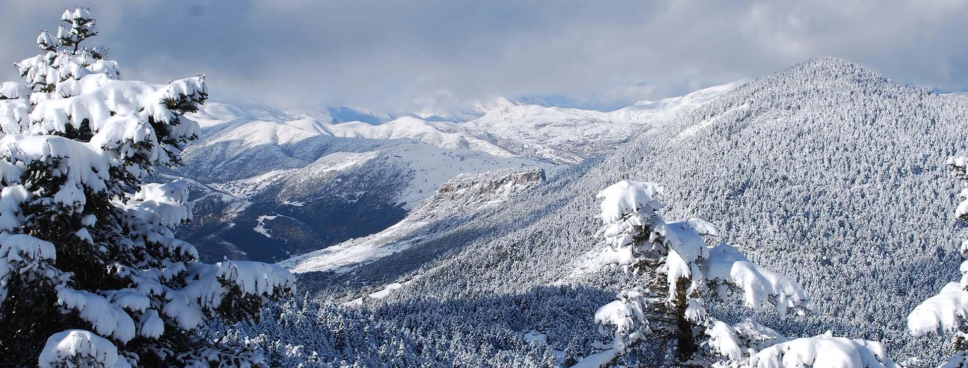Parnassos mountain, Voiotia