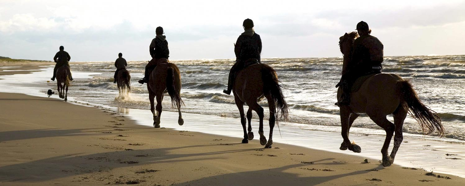 Horse riding in Heraklion Crete