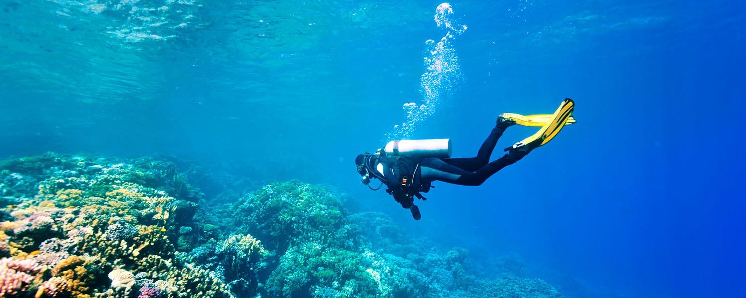 Scuba Diving - East Crete