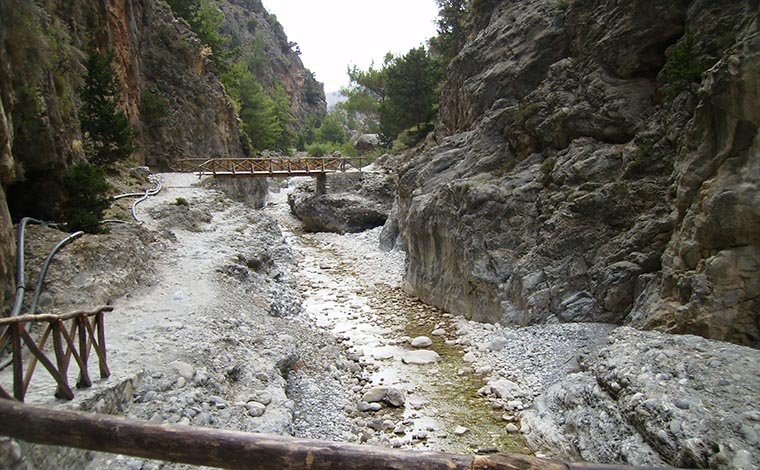 Samaria Gorge from Chania