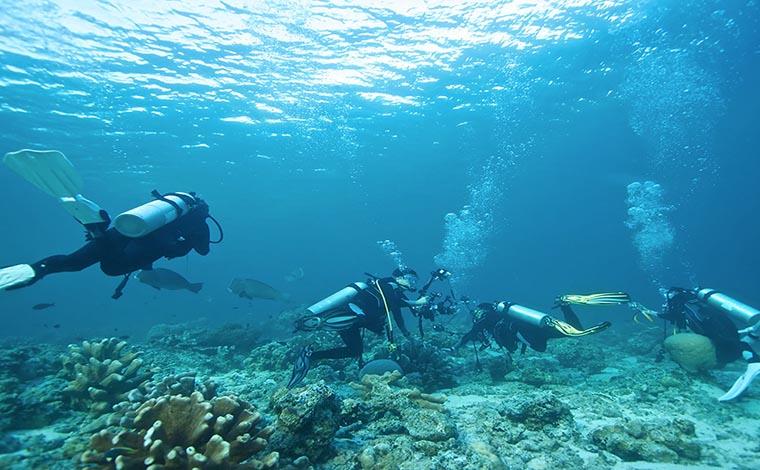 Scuba Diving - Rethymnon & Georgioupolis