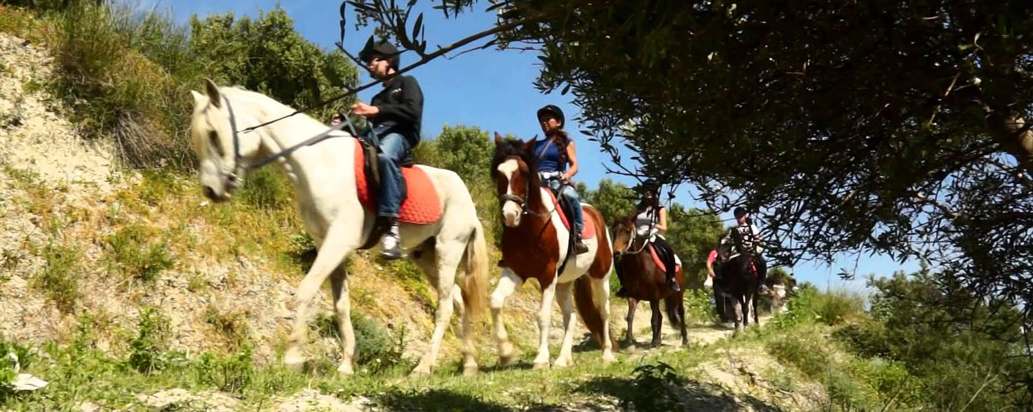 Horse riding in Chersonissos Next to the Sea & Mountains